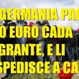 Germania Migranti